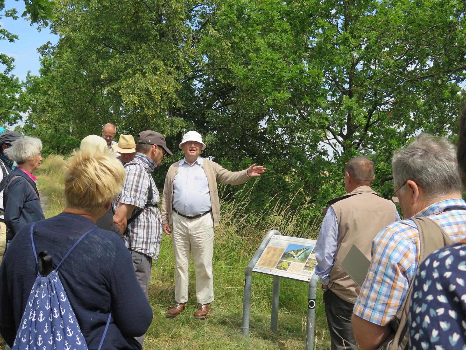 Herr Biermann erläutert die Schautafel mit dem Schwalbenschwanz